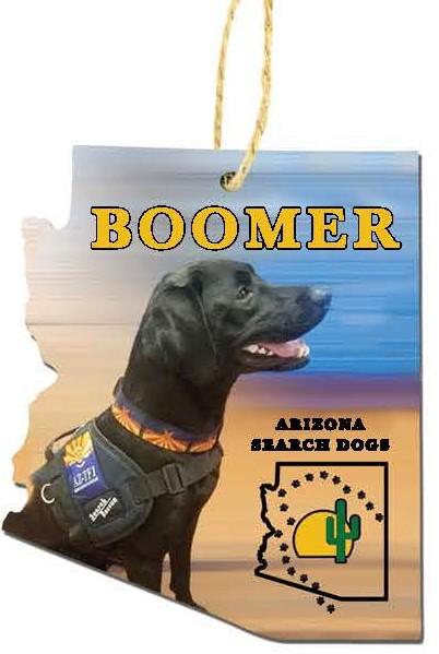 pre-order Boomer 2020 Ornament
