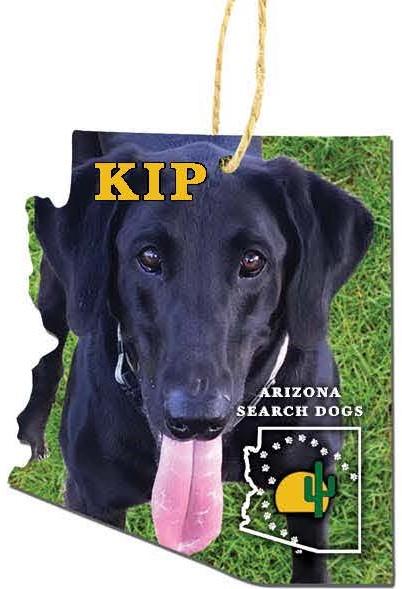 pre-order Kip 2020 Ornament