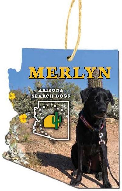 Merlyn 2020 Ornament