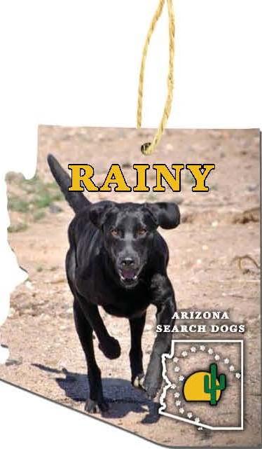 Rainy 2020 Ornament